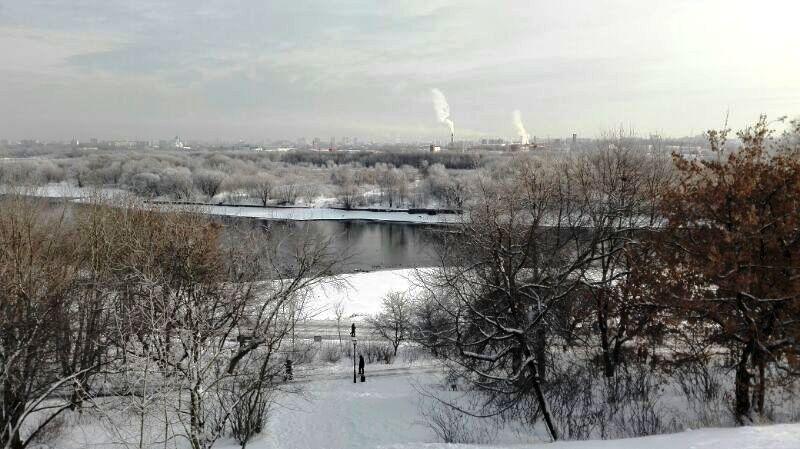 москва сегодня январь 2016